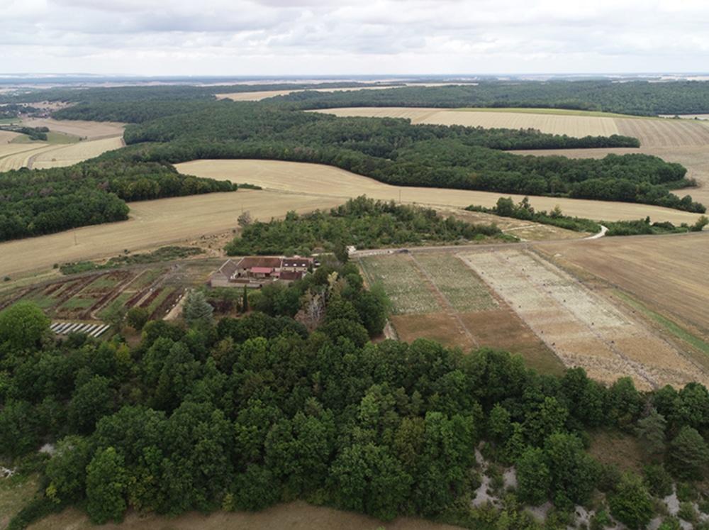 ferme du moulin élevage
